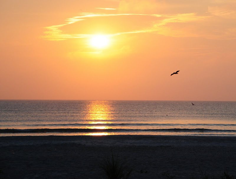 Click image for larger version Name: beach1.jpg Views: 1113 Size: 87.7 KB ID: 899293