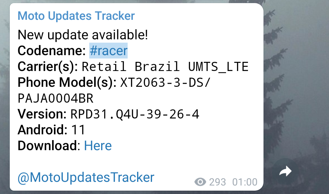 Screenshot_20210319-132233.png
