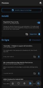 Screenshot_20210521-172135.jpg